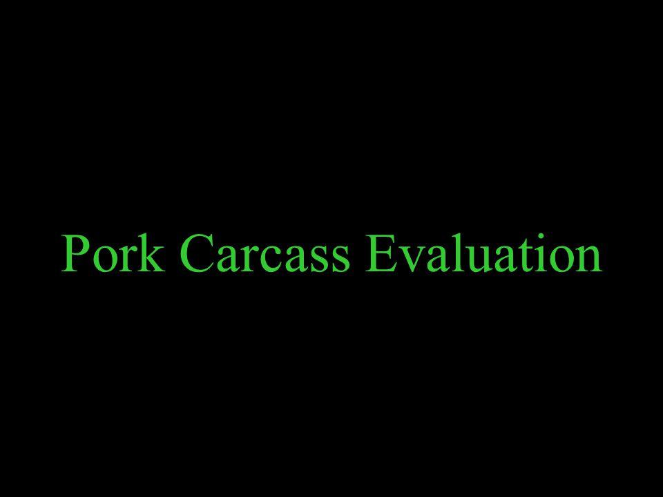Pork Carcass Evaluation