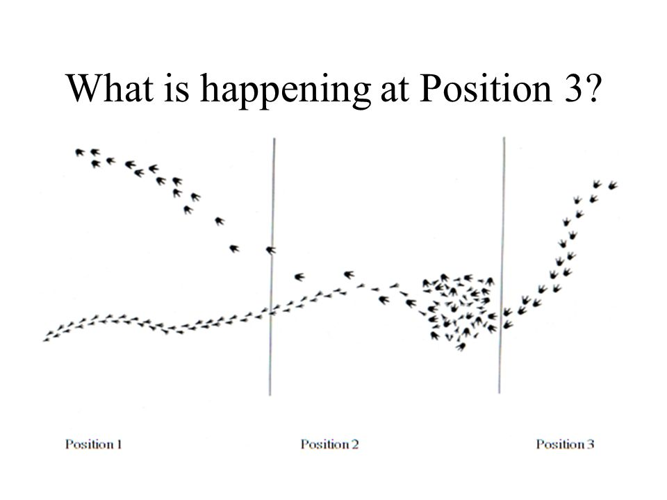 What is happening at Position 3?