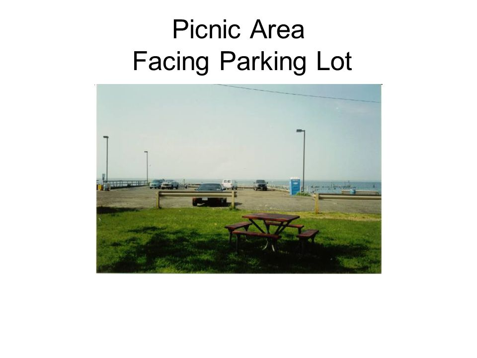Picnic Area Facing Parking Lot