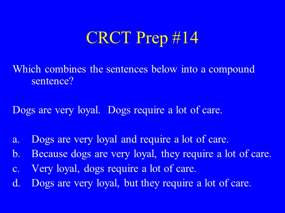 CRCT Prep #14 Which combines the sentences below into a compound sentence? Dogs are very loyal. Dogs require a lot of care. a.Dogs are very loyal and