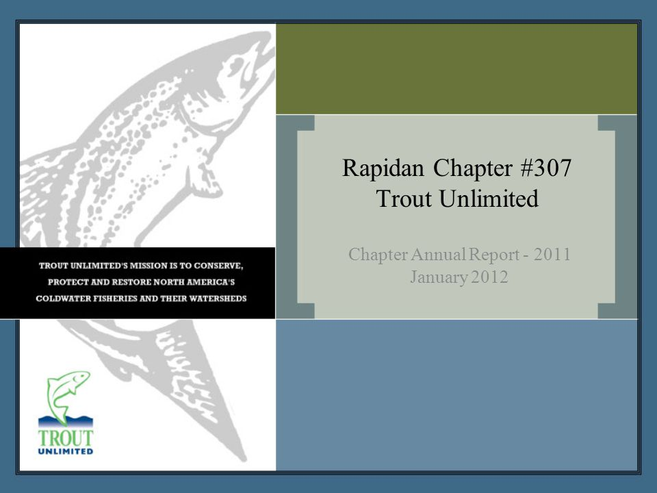 Rapidan Chapter's Vision and Strategy Vision - In accord with TU National's vision, by the next generation, Rapidan Chapter will do it's part in ensuring that robust populations of native and wild coldwater fish once again thrive within their North American range, so that our children can enjoy healthy fisheries in their home waters.