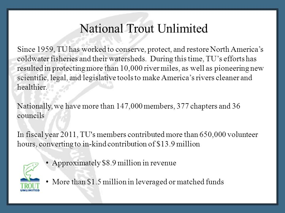 Since 1959, TU has worked to conserve, protect, and restore North America's coldwater fisheries and their watersheds.