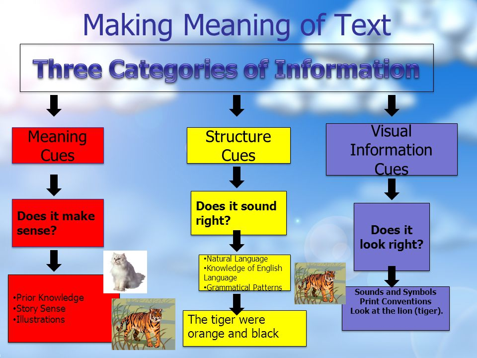 Making Meaning of Text Children use sources of information to read texts.