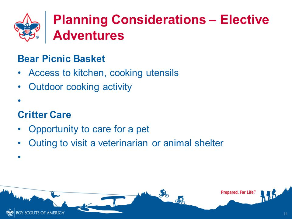 Planning Considerations – Elective Adventures Bear Picnic Basket Access to kitchen, cooking utensils Outdoor cooking activity Critter Care Opportunity to care for a pet Outing to visit a veterinarian or animal shelter 11