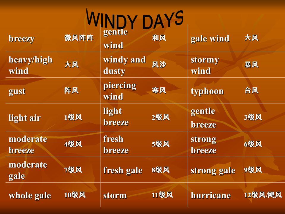breezy微风阵阵gentlewind和风 gale wind 大风 heavy/high wind 大风 windy and dusty 风沙 stormy wind 暴风 gust阵风 piercing wind 寒风typhoon台风 light air 1 级风 light breeze 2 级风 gentlebreeze 3 级风 moderate breeze 4 级风 fresh breeze 5 级风 strong breeze 6 级风 moderate gale 7 级风 fresh gale 8 级风 strong gale 9 级风 whole gale 10 级风 storm 11 级风 hurricane 12 级风 / 飓风