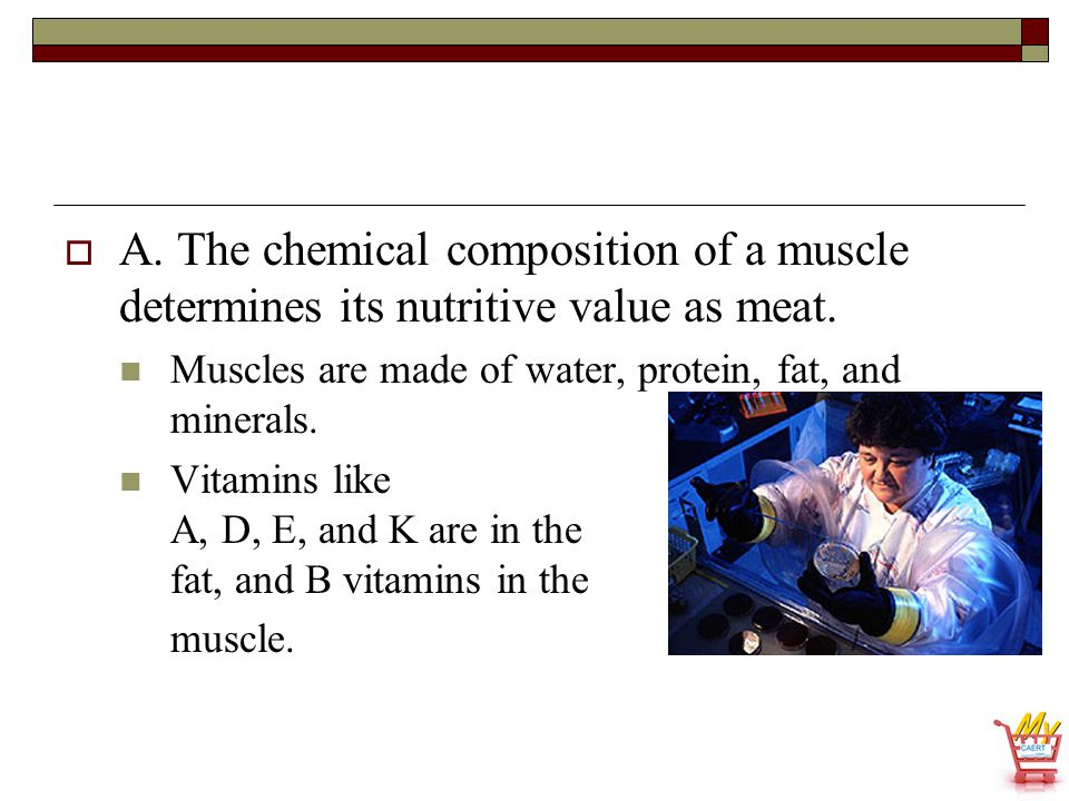  A. The chemical composition of a muscle determines its nutritive value as meat. Muscles are made of water, protein, fat, and minerals. Vitamins like