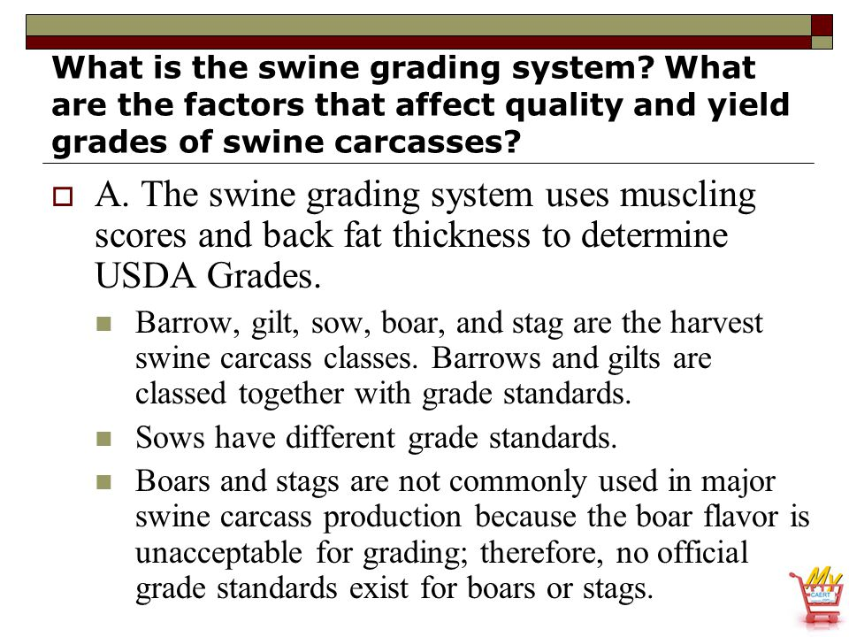What is the swine grading system? What are the factors that affect quality and yield grades of swine carcasses?  A. The swine grading system uses mus