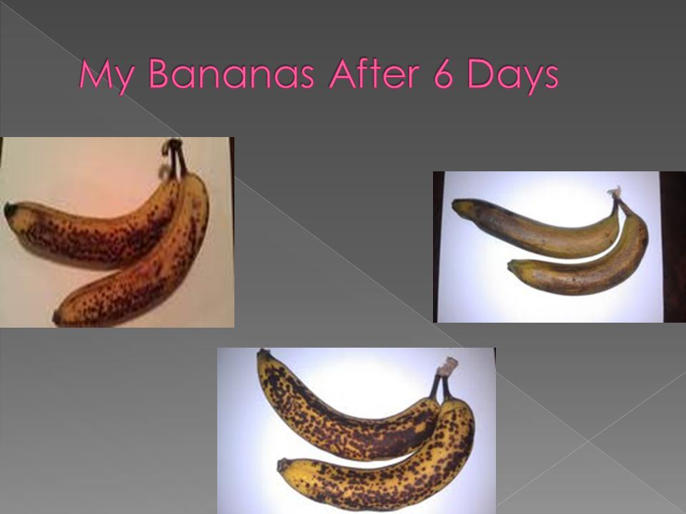Day 1Day 2Day 3Day 4Day 5Day 6 Group 1 Bananas are green Bananas are turning slightly yellow Bananas are yellow Bananas are yellow with brown spots Bananas have lots of yellow spots and are yellow Bananas have very many brown spots Group 2 Bananas are green Bananas are turning yellow Bananas are yellow Bananas are yellow with a few brown spots Bananas are yellow with more yellow spots then Day 4 Bananas are almost completely brown Group 3 Bananas are green Bananas are still green Bananas are in between green and yellow Bananas are yellow and green in places Bananas are yellow and green Bananas are yellow and green just as Day 5