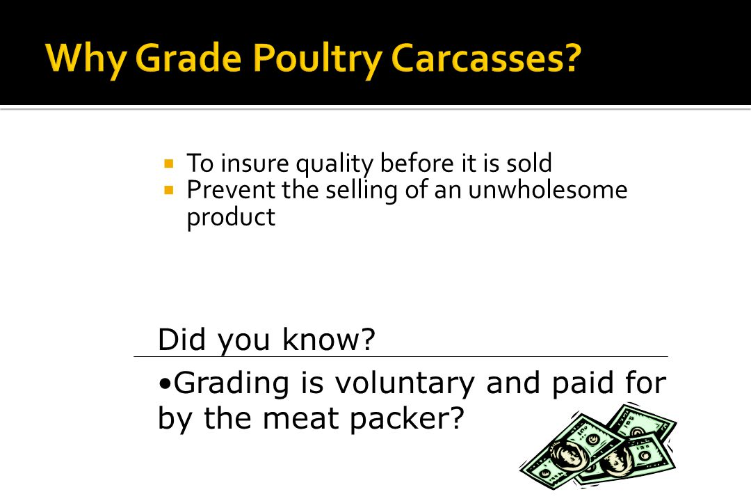 3.03 Define terminology used in poultry carcass selection and evaluation Poultry Carcass Evaluation
