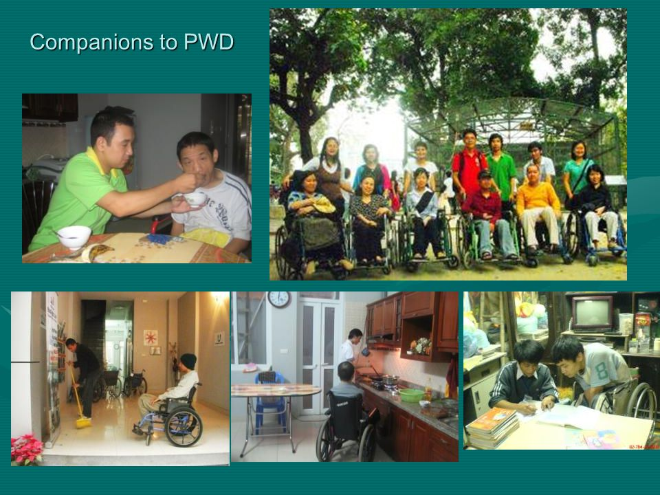 Companions to PWD