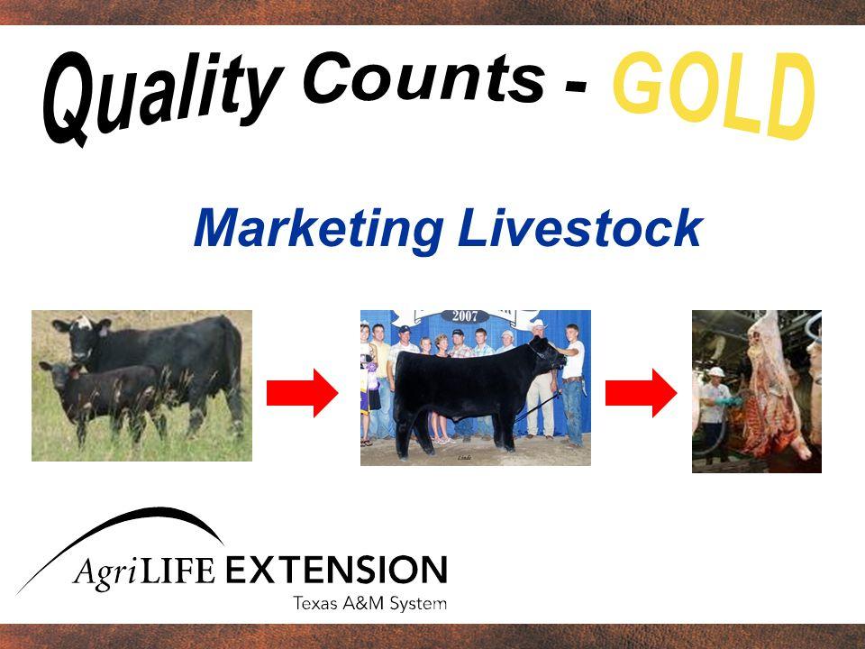 Project type MarketBreedingTotal Beef cattle 8,435 7,055 15,490 Swine 32,751 2,882 35,633 Sheep 11,323 1,338 12,661 Goats 23,817 2,331 26,148 TOTAL 76,32613,606 89,932 2006 Results