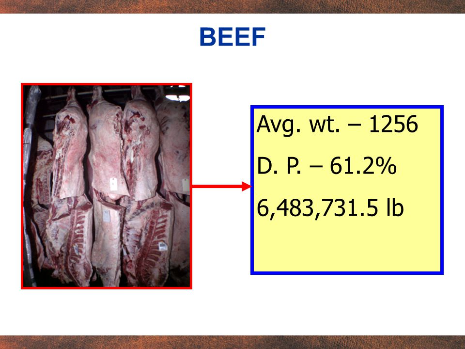 Avg. wt. – 1256 D. P. – 61.2% 6,483,731.5 lb BEEF