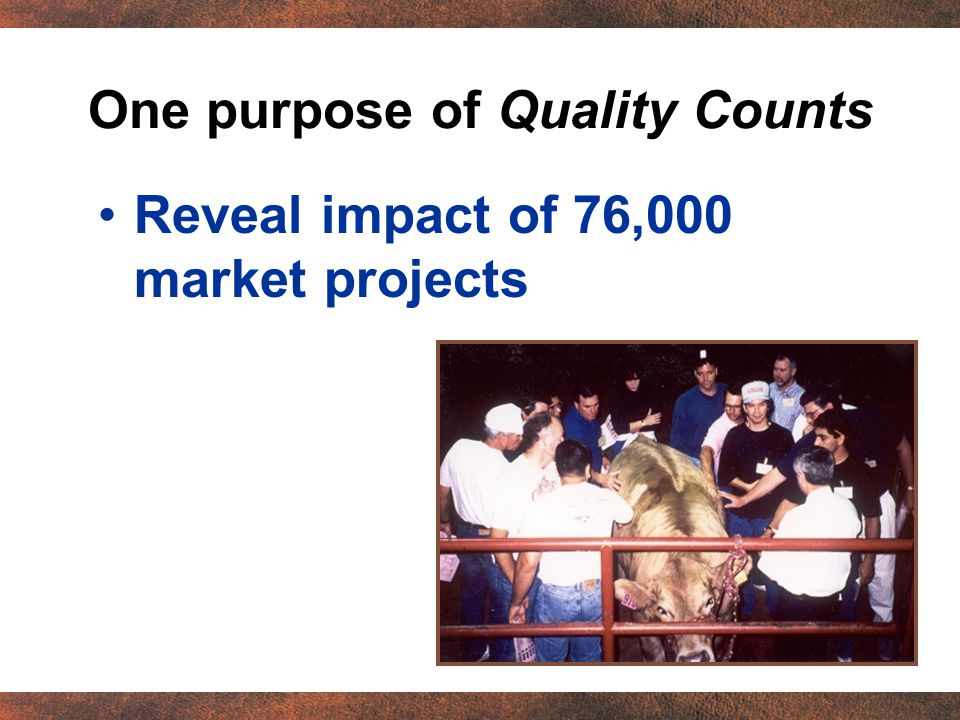 One purpose of Quality Counts Reveal impact of 76,000 market projects