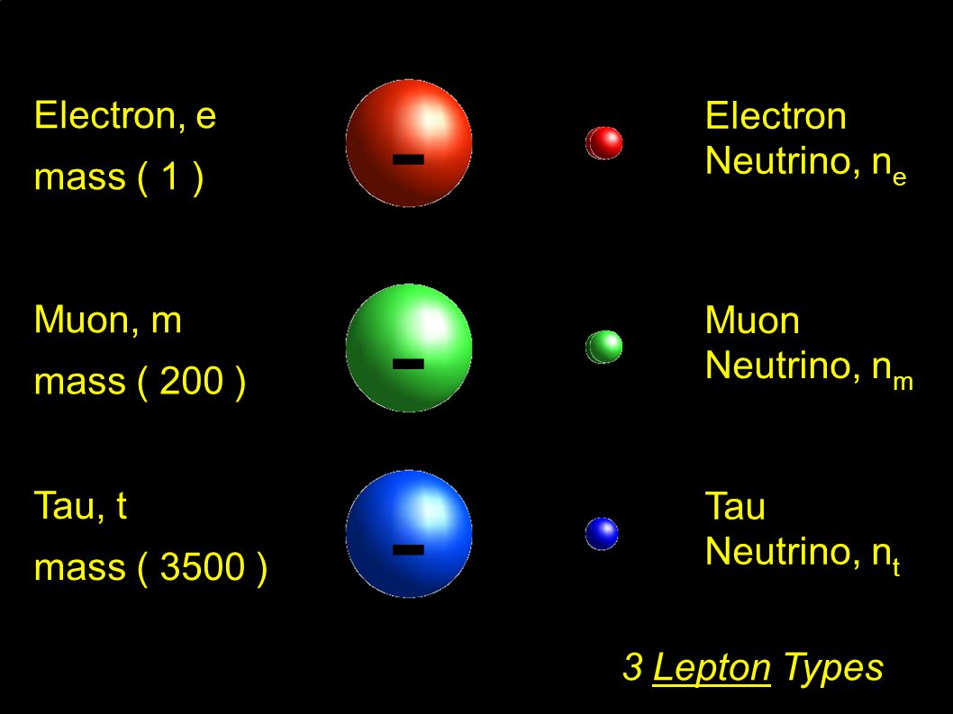 Electron Neutrino, n e Electron, e mass ( 1 ) - Muon Neutrino, n m Muon, m mass ( 200 ) - Tau Neutrino, n t Tau, t mass ( 3500 ) -- 3 Lepton Types