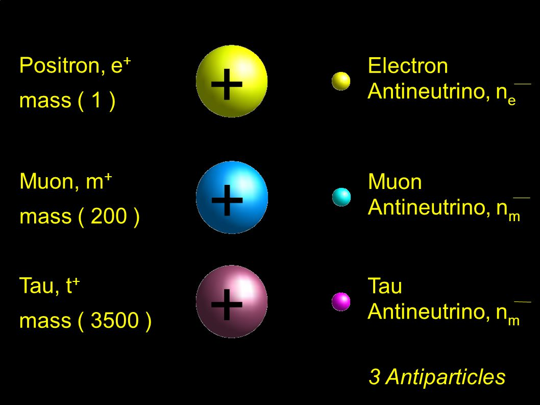 Electron Antineutrino, n e Positron, e + mass ( 1 ) + 3 Antiparticles Muon Antineutrino, n m Muon, m + mass ( 200 ) + Tau Antineutrino, n m Tau, t + mass ( 3500 ) +