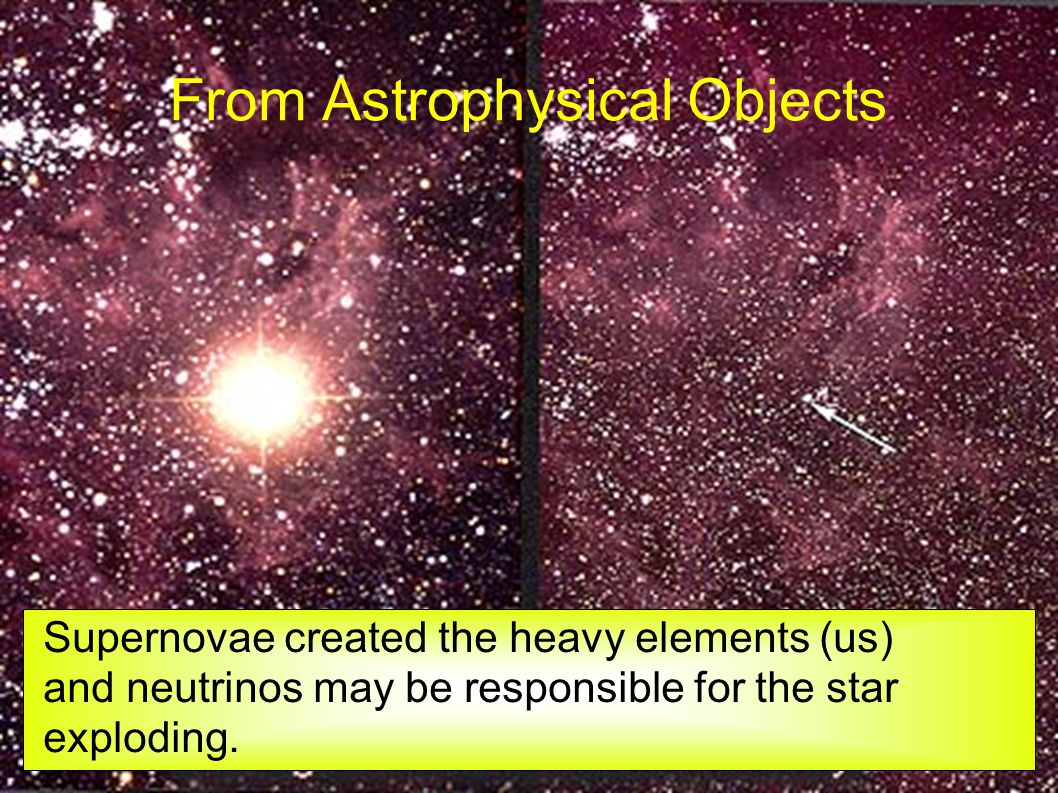 From Astrophysical Objects Supernovae created the heavy elements (us) and neutrinos may be responsible for the star exploding.