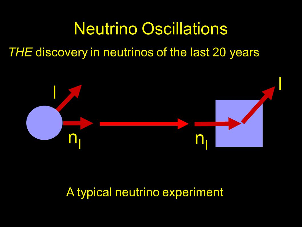 Neutrino Oscillations THE discovery in neutrinos of the last 20 years l nlnl l nlnl A typical neutrino experiment