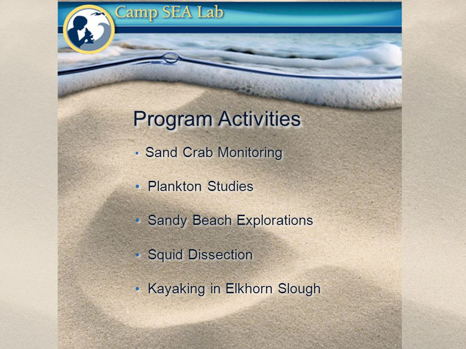 Program Activities Sand Crab Monitoring Plankton Studies Sandy Beach Explorations Squid Dissection Kayaking in Elkhorn Slough Sand Crab Monitoring Plankton Studies Sandy Beach Explorations Squid Dissection Kayaking in Elkhorn Slough