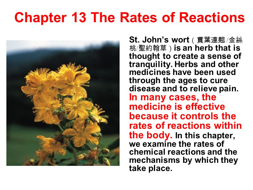 Chapter 13 The Rates of Reactions St. John's wort (貫葉連翹 / 金絲 桃 / 聖約翰草) is an herb that is thought to create a sense of tranquility. Herbs and other me