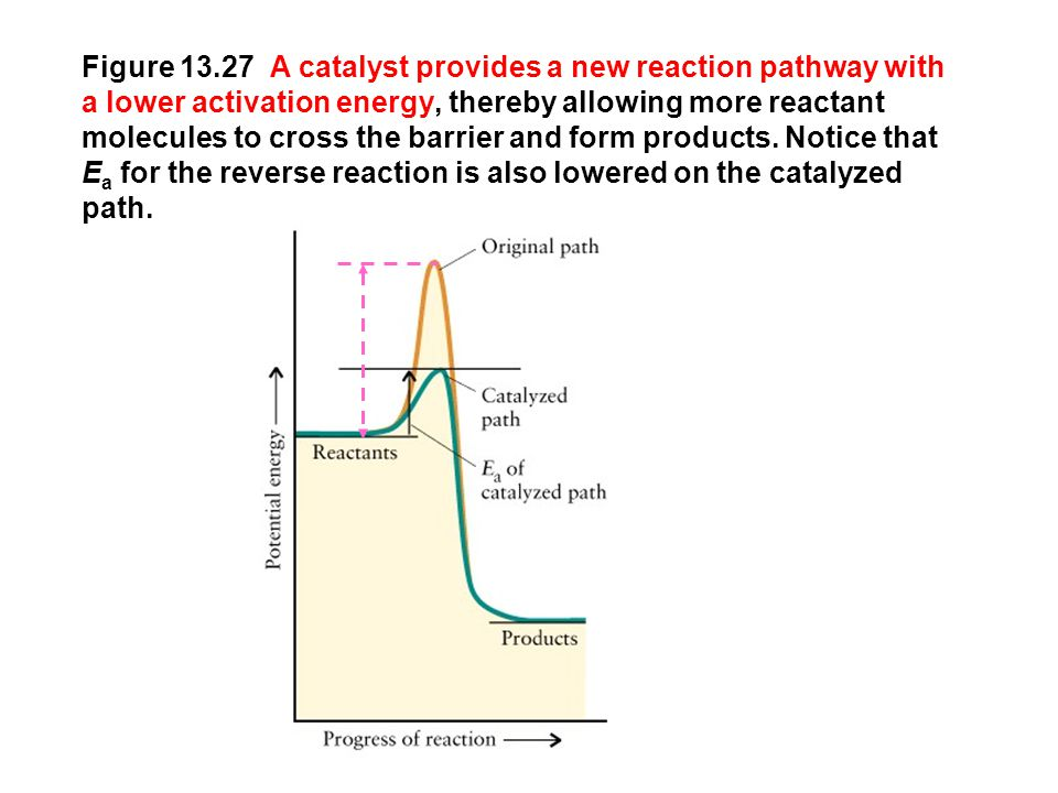Figure 13.27 A catalyst provides a new reaction pathway with a lower activation energy, thereby allowing more reactant molecules to cross the barrier