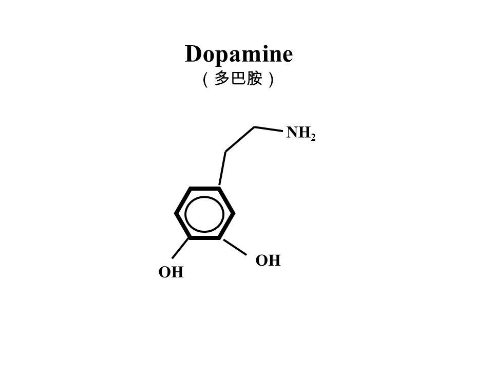 Dopamine OH NH 2 (多巴胺)