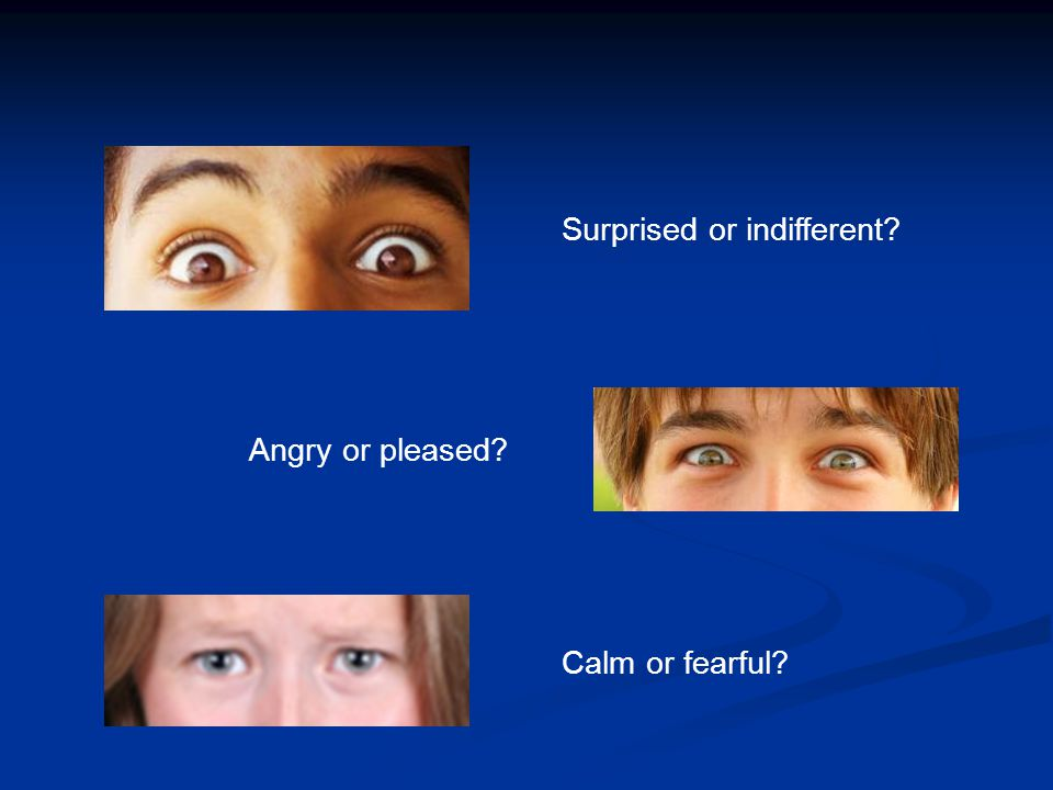 Surprised or indifferent Angry or pleased Calm or fearful