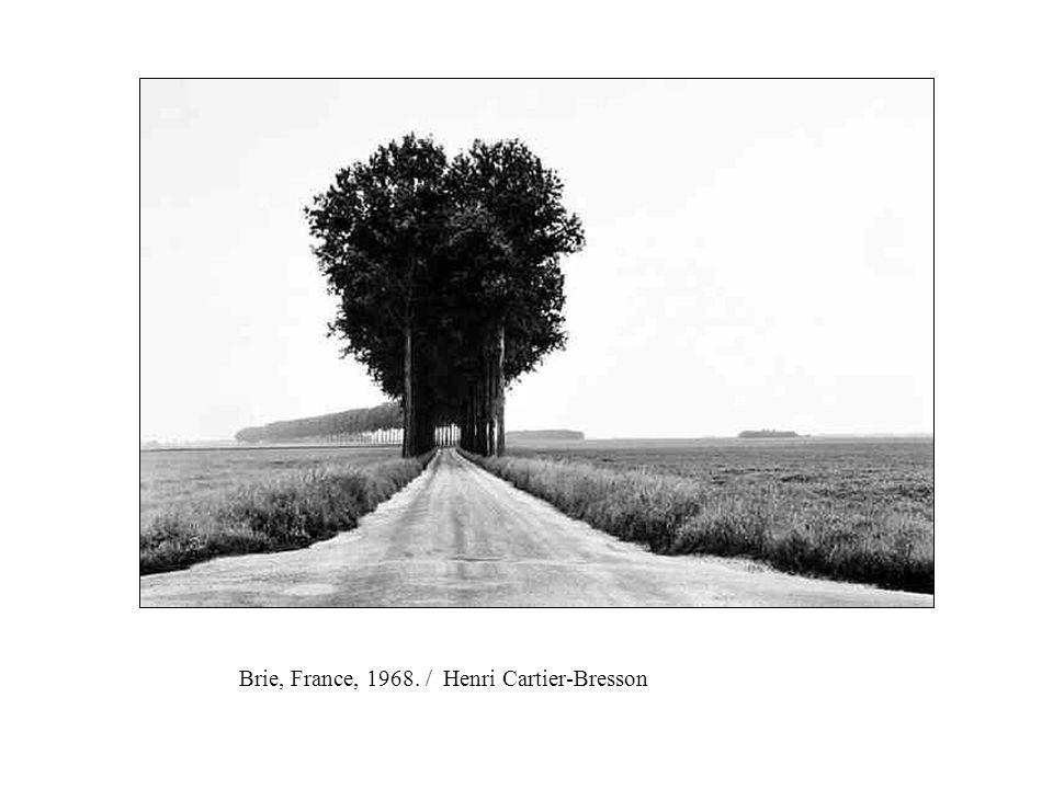 Brie, France, 1968. / Henri Cartier-Bresson