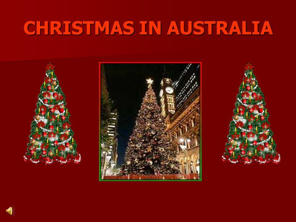 Christmas in Australia is not like Christmas anywhere else.