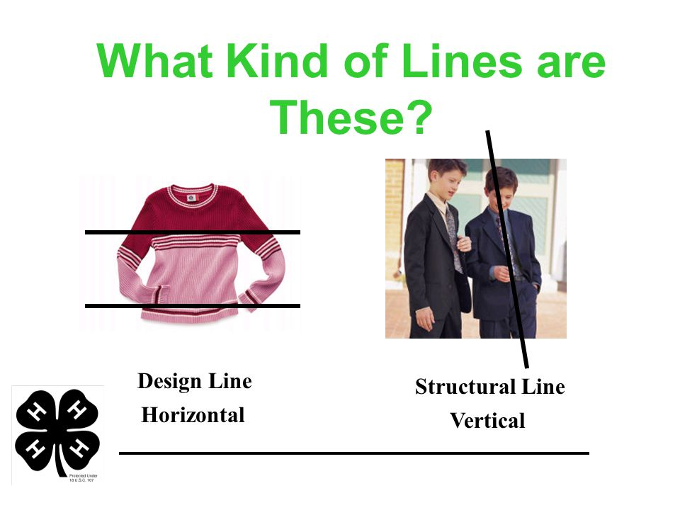 What Kind of Lines are These Design Line Structural Line Horizontal Vertical