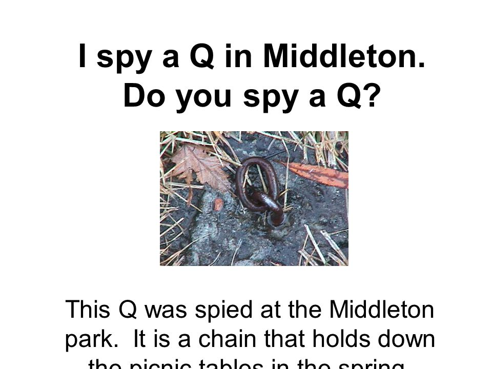 I spy a Q in Middleton. Do you spy a Q. This Q was spied at the Middleton park.