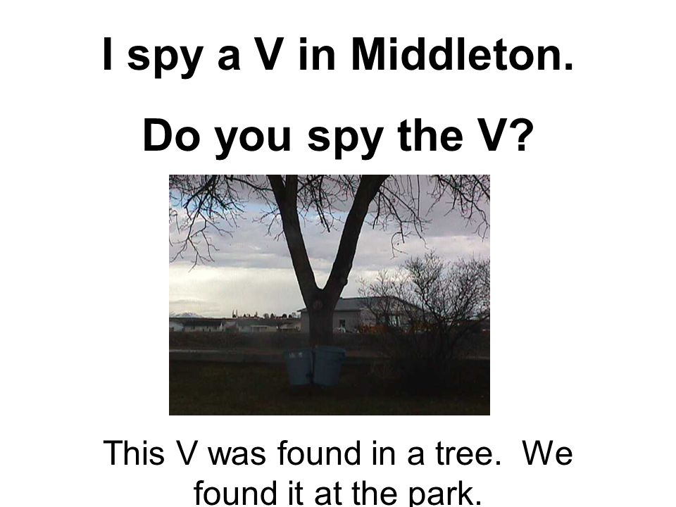 I spy a V in Middleton. Do you spy the V? This V was found in a tree. We found it at the park.
