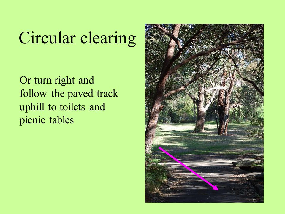 Circular clearing Or turn right and follow the paved track uphill to toilets and picnic tables