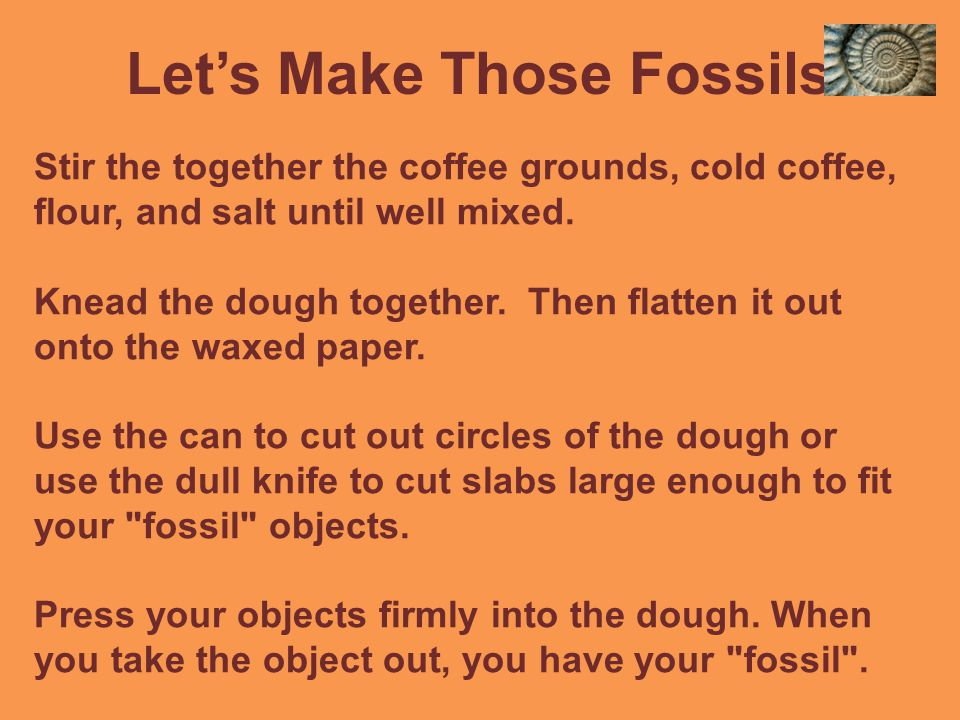 Let's Make Those Fossils.