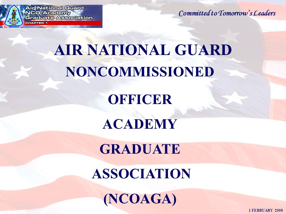 AN ASSOCIATION OF HIGHLY MOTIVATED AND PROFESSIONALLY EDUCATED ENLISTED MEMBERS DEDICATED TO THE MISSION OF THE AIR NATIONAL GUARD WHILE INSPIRING AN ENTHUSIASTIC SPIRIT OF PATRIOTISM AND DEVOTION TO GOD AND COUNTRY.