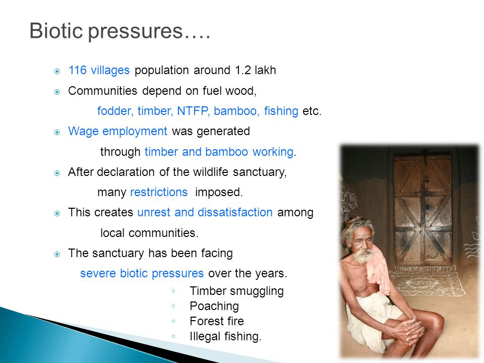 Biotic pressures….  116 villages population around 1.2 lakh  Communities depend on fuel wood, fodder, timber, NTFP, bamboo, fishing etc.  Wage empl