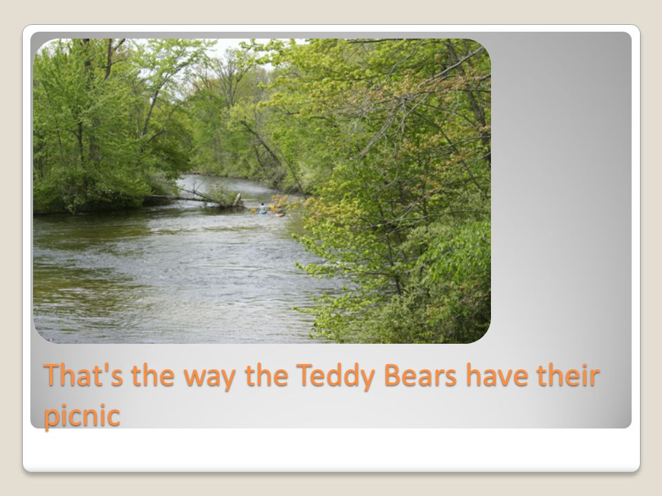 For every bear that ever there was will gather there for certain