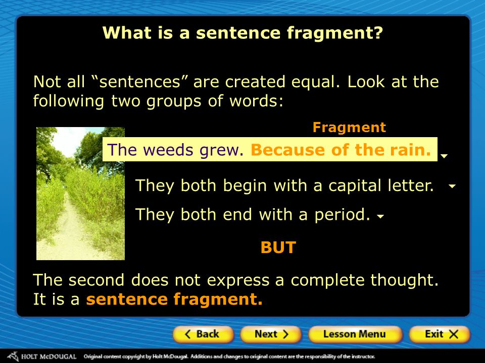 """Not all """"sentences"""" are created equal. Look at the following two groups of words: The weeds grew. Because of the rain. They both begin with a capital"""