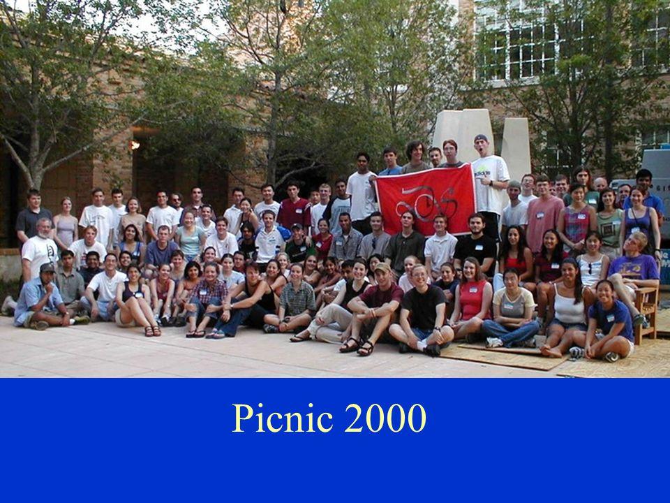 Picnic 2000