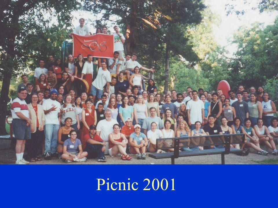 Picnic 2001