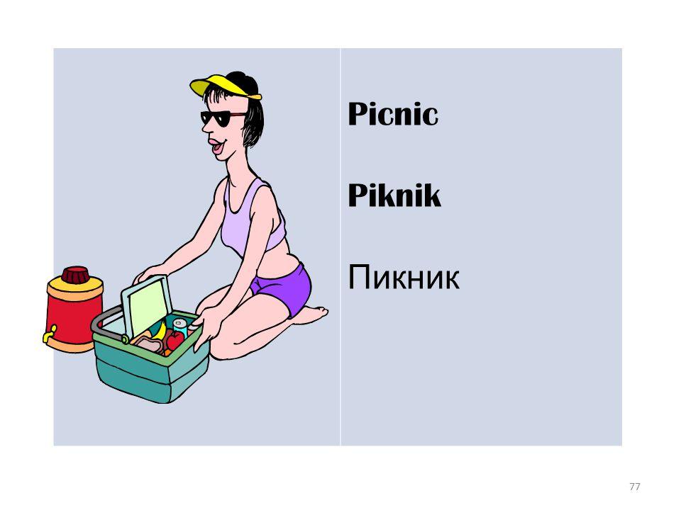 77 Picnic Piknik Пикник