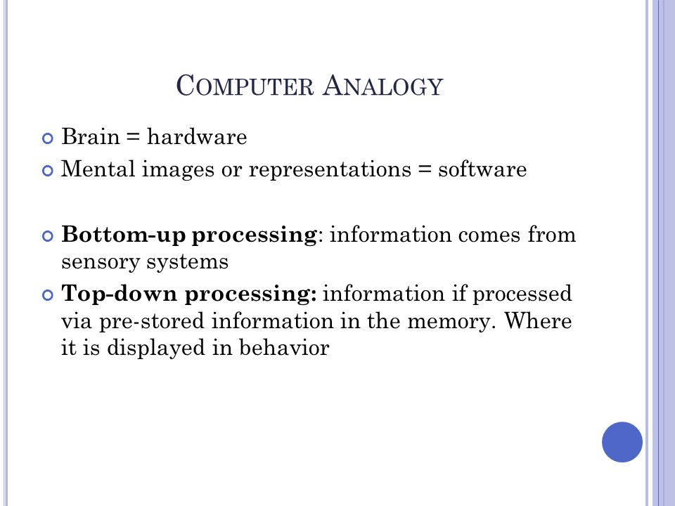 C OMPUTER A NALOGY Brain = hardware Mental images or representations = software Bottom-up processing : information comes from sensory systems Top-down