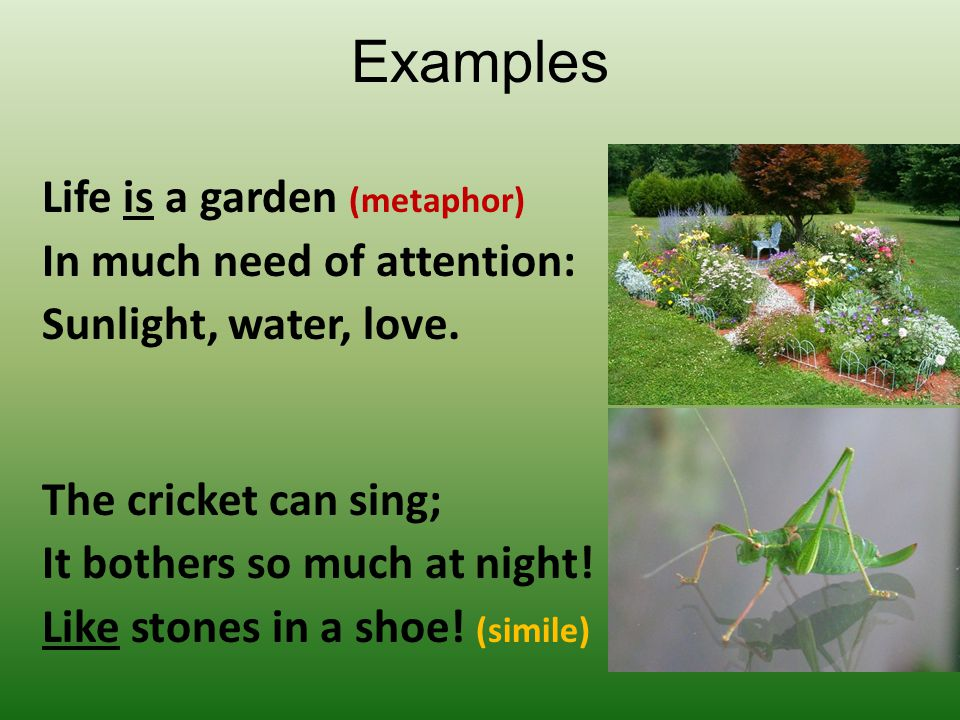 Examples Life is a garden (metaphor) In much need of attention: Sunlight, water, love. The cricket can sing; It bothers so much at night! Like stones