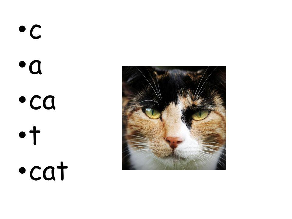 c a ca t cat