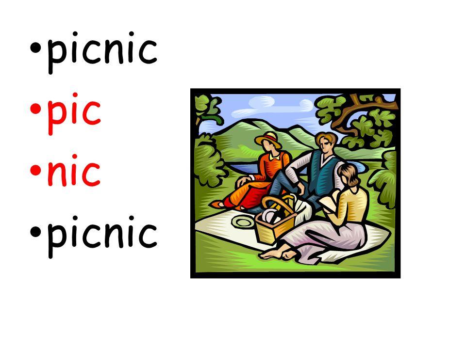 picnic pic nic picnic