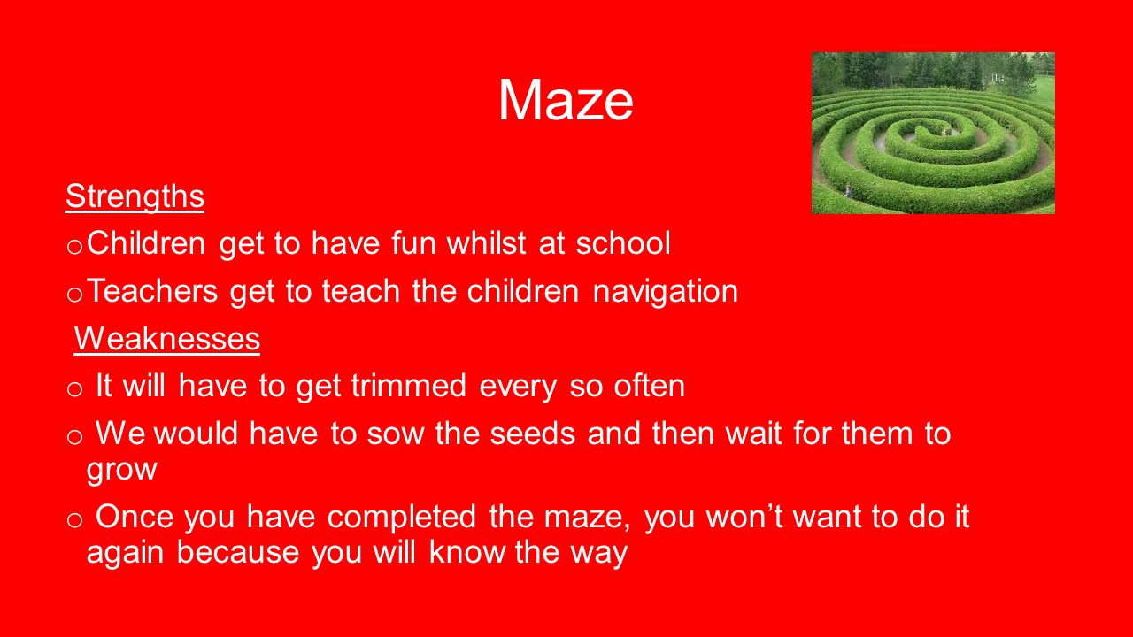 Maze Strengths o Children get to have fun whilst at school o Teachers get to teach the children navigation Weaknesses o It will have to get trimmed every so often o We would have to sow the seeds and then wait for them to grow o Once you have completed the maze, you won't want to do it again because you will know the way