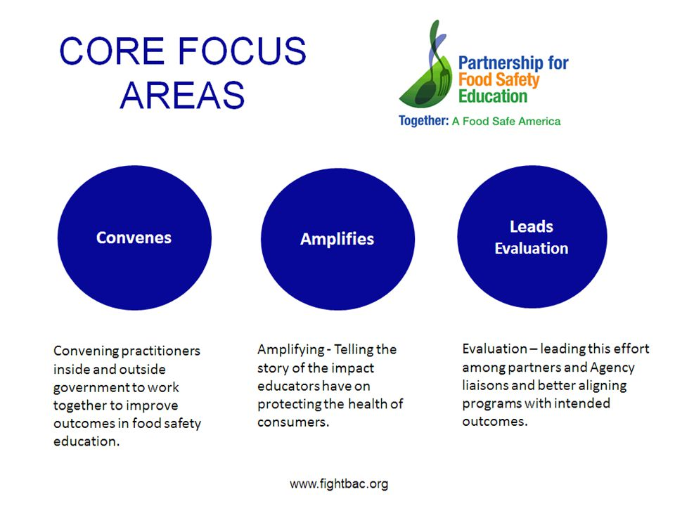 Core focus areas