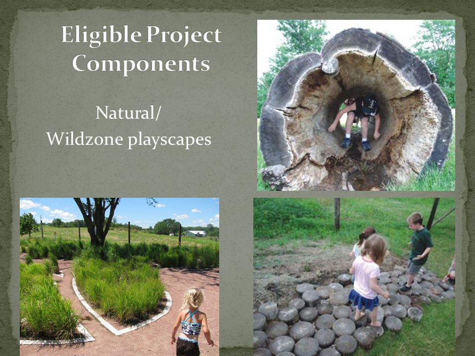 Natural/ Wildzone playscapes