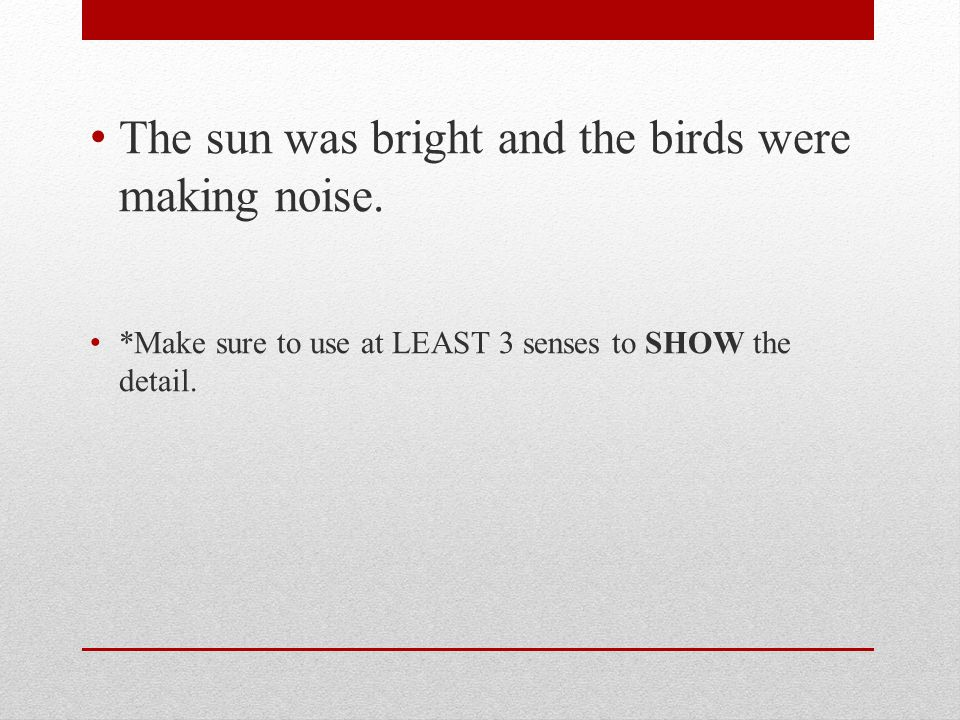 The sun was bright and the birds were making noise.