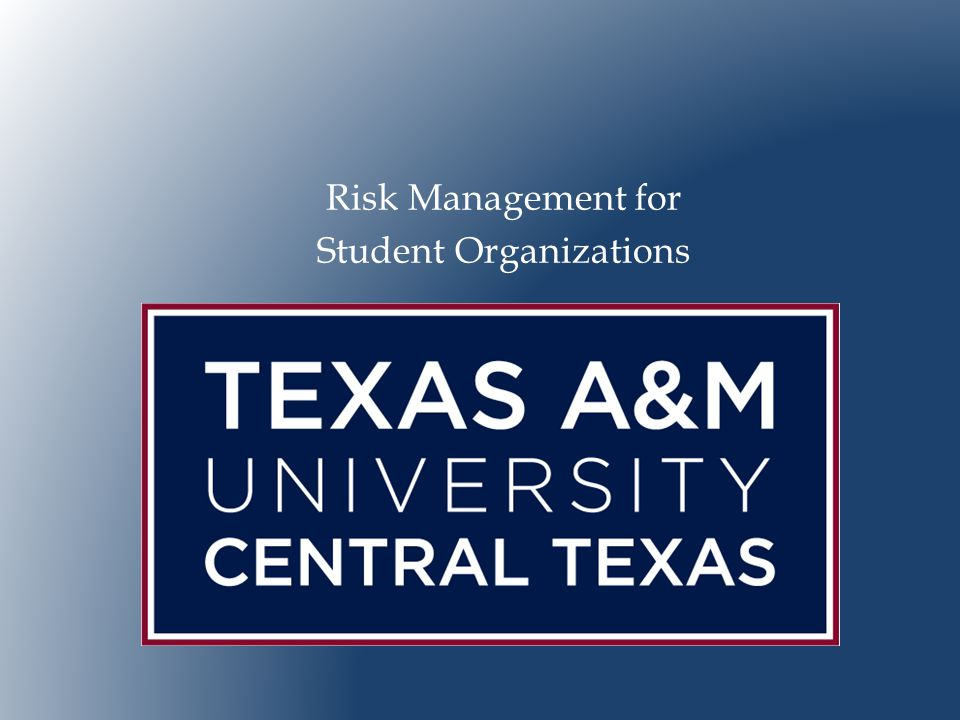  Provide an overview of risk management.