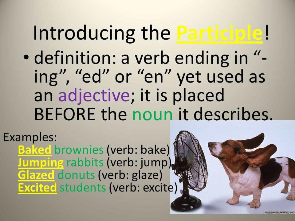 Participle Practice Directions: Read the following sentences Write down the participle phrases and underline the participle.